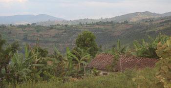 Burundi Armut Card
