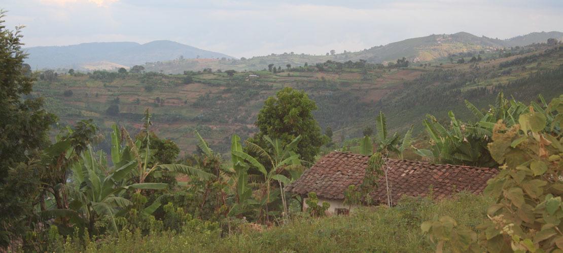 Burundi Armut Web