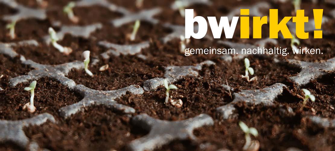 Bwirkt Burundi Web Logo